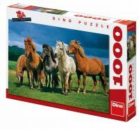 Zvětšit fotografii - Islandští koně 1000D